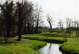 Hooiland in beekdal, door mensen gemaakt natuurlandschap. Foto Koos Dijksterhuis