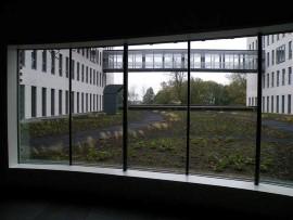 Ziekenhuis Meander uitzicht op sedumdak. Foto Koos Dijksterhuis